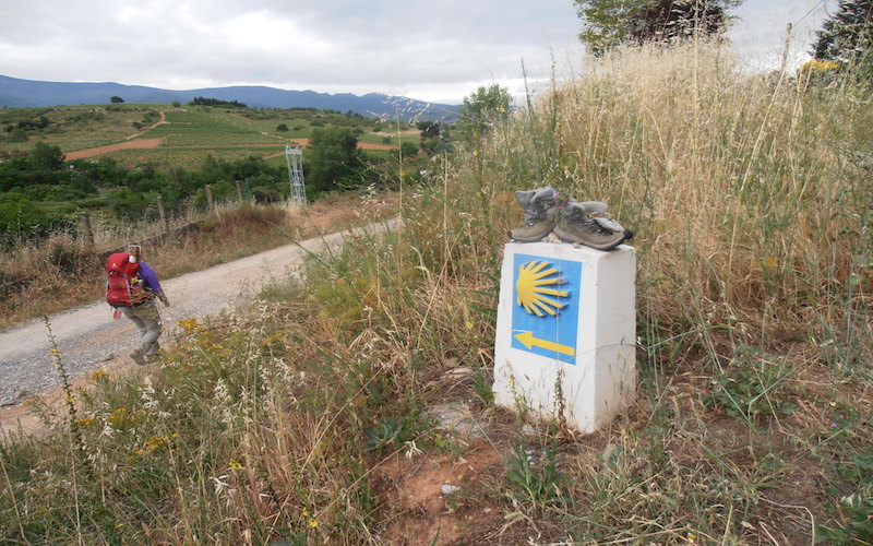 eeaf52ac2fba46 El Camino  30% mer pilgrimer än förra året - Nyheter Norra Spanien ...