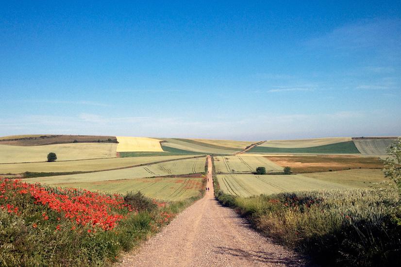 Har du bara en vecka på dig och vill gå Camino de Santiago