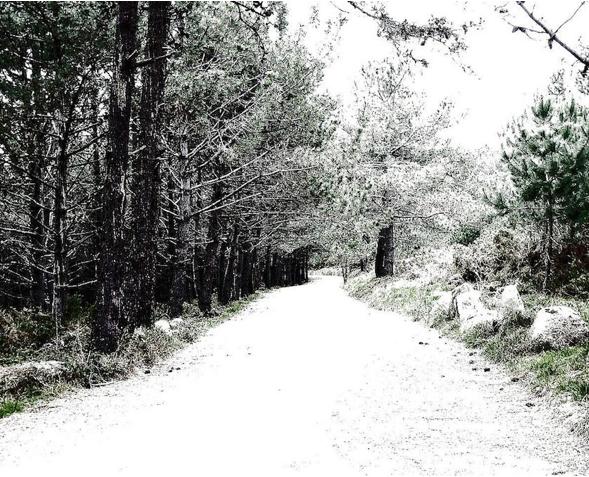 Por qué hacer el Camino de Santiago en invierno? - Camino de