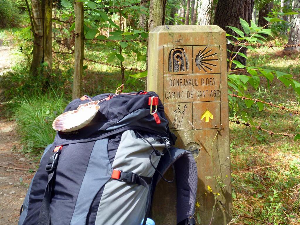 044c26d11845 Im Allgemeinen ist der Weg immer gut markiert und auf dem Camino Francés  gibt es sogar eine Vielzahl von Schildern