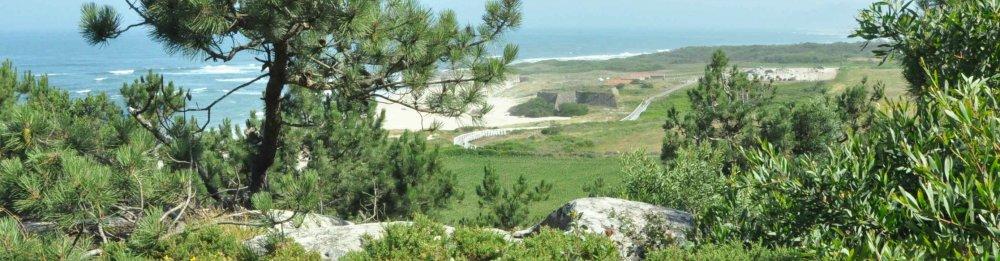 Camino Portugués en bici por la costa