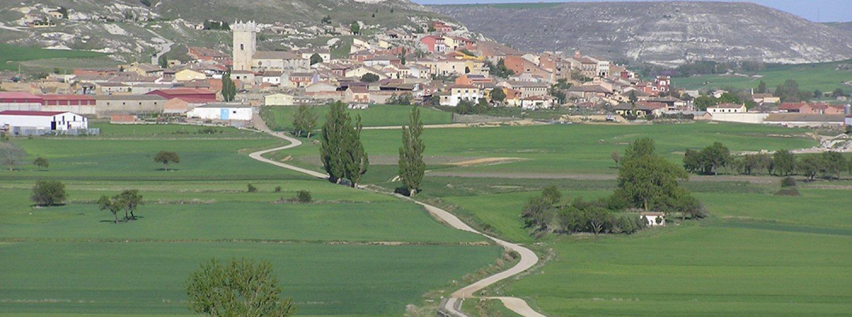 Camino Francés (Logroño - León)