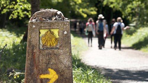 Hacer el Camino de Santiago solo o acompañado… ¿Qué hago?