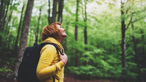 20% to 50% less stress, anxiety and depressive symptoms after a camino