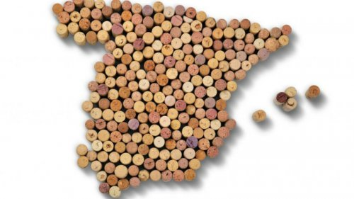 Tempranillo Wine - Everything You Need to Know